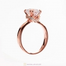 Sparkling Elegance Ring in Rose Gold Clear CZ